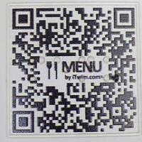 qr-code-braille